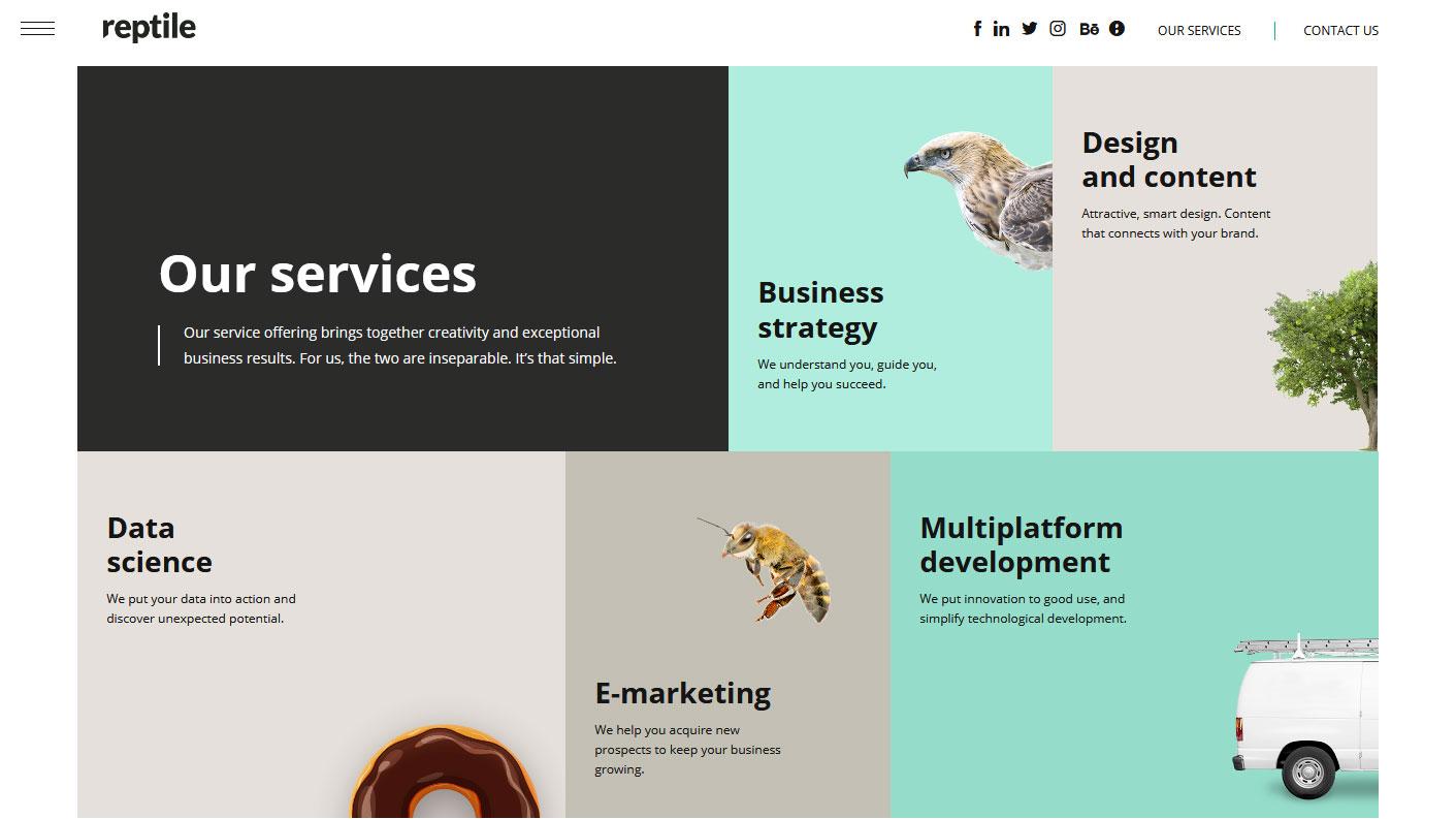 Reptile - Web Agency